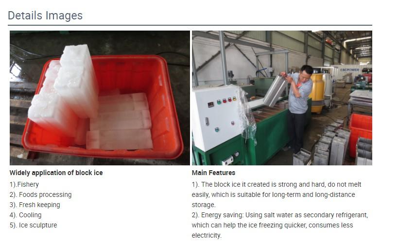 solar ice block (8)